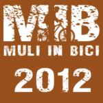 MIB2012