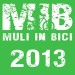 MIB2013