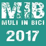 MIB2017_150x150