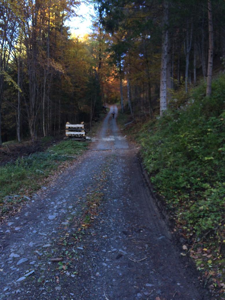Foto 27-10-15, 11 53 04