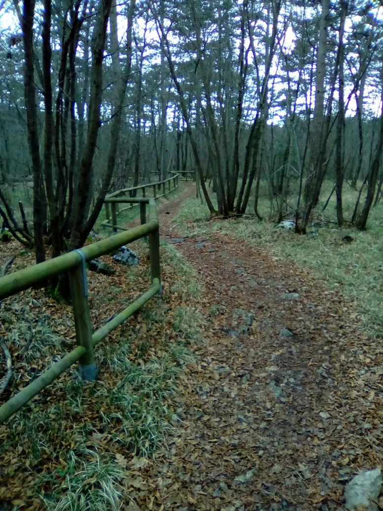 Foto 12 – Sembra sinuoso sto sentiero. In che posizione?